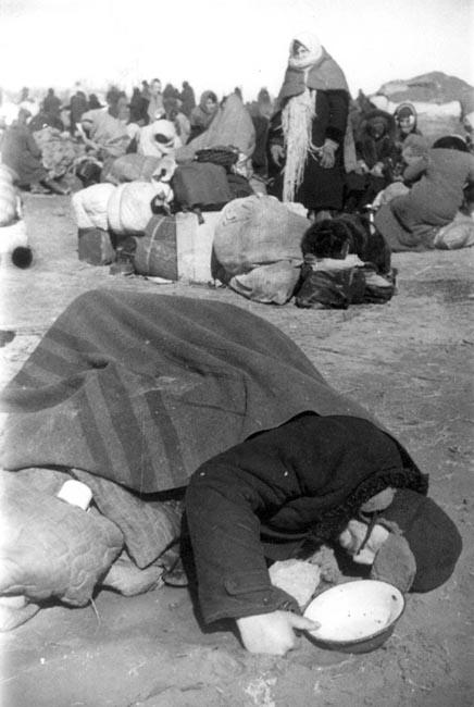 Умерший от голода на станции Кобона. Ладожское озеро, апрель 1942 г. Автор съемки: Мазелев Р.