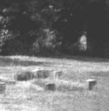 Фотографии привидений