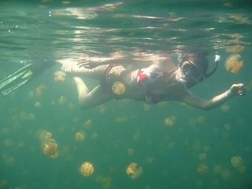 Медузье озеро