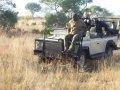 Национальный парк Kruger