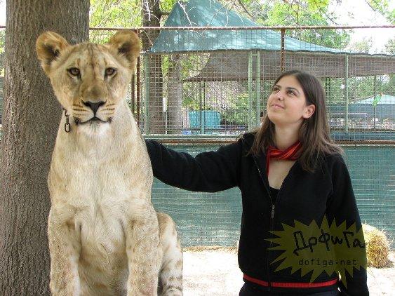 Ну и Зоопарк. Погладь меня, если сможешь...