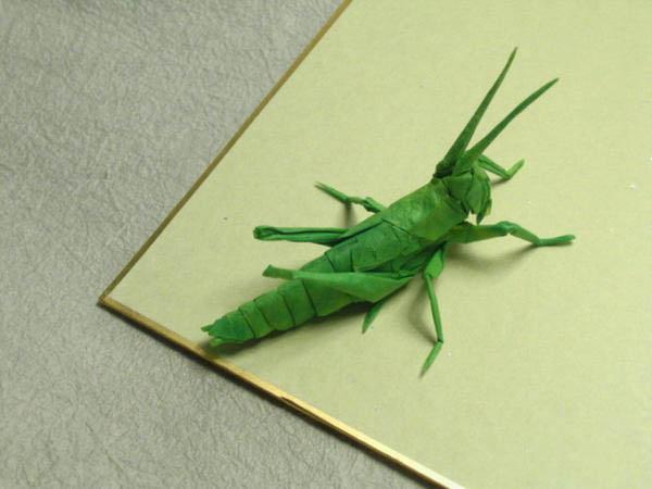 Реалистичные насекомые из бумаги