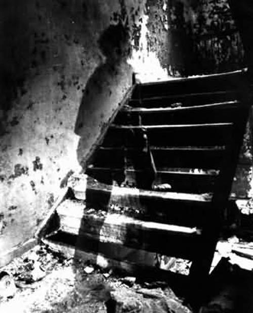 Коллекция призраков Мишеля Арволи
