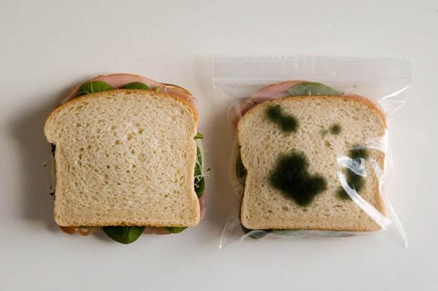 Интересные изобретения Кто-то постоянно крадет ваши бутерброды из общего холодильника на работе? Засуньте их в пакет с нарисованной плесенью!