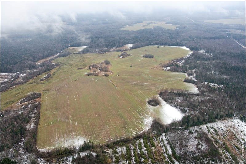 Самый высокий абандон Большое поле. Особо любопытные могут подсчитать площадь поля используя данные о средней высоте леса.