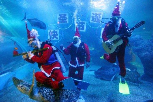 Лучшие Рождественские фотографии Музыканты, переодетые в костюмы Санта-Клаусов, плавают в аквариуме в китайском городе Фучжоу