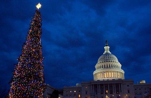 Лучшие Рождественские фотографии Праздничная елка в Капитолии (Capital Holiday Tree) в Вашингтоне, США
