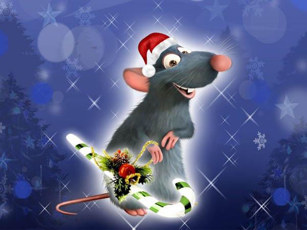 Фото приколы, курьезы: Год Крысы -