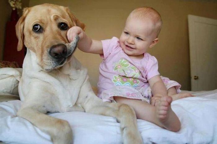 Фото приколы, курьезы: Детские -