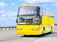 Каковы золотые правила автобусного тура? Подготовка