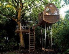 Дома на деревьях - назад, к природе? История жилища