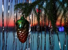Как сохранить новогоднее дерево?