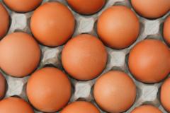 Как сохранить деньги и здоровье? За продуктами - с анализом холестерина