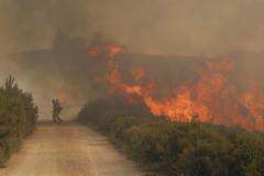 Лесные пожары. Как спастись самому и защитить свой дом, деревню, дачный поселок?