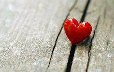 Любовь - лучшая защита