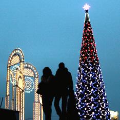 Новый год россияне встретят дома под елками