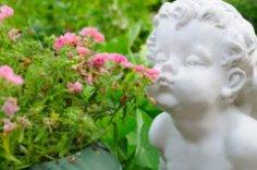 Как украсить сад?