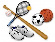Спорт - прямая дорога к профессиональному успеху