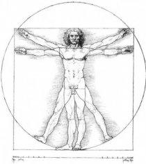 Загадки человеческого облика