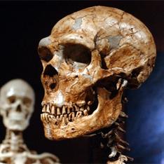 С людей сняли вину за смерть неандертальцев