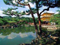 Поездки в Китай и Корею как часть религиозного туризма