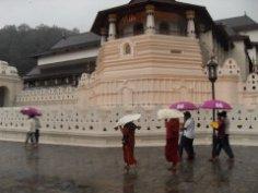 Шри-Ланка. Храм Зуба Будды – главная святыня острова?