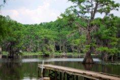 Куда можно поехать в Техасе? Загадочное озеро Каддо.
