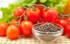 Как солить помидоры? 12 рецептов из записной книжки моей бабушки