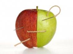 Были ли знакомы генетические Адам и Ева?