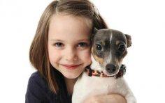 Что важнее при выборе собаки - экстерьер или характер?