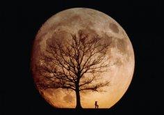 Луна и ее темные и загадочные стороны