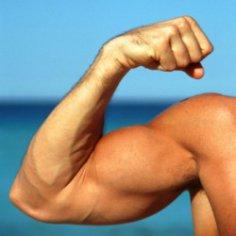 Чем больше у мужчины тестостерона, тем он честнее
