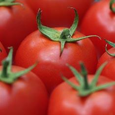 Овощи и фрукты заменит порошок