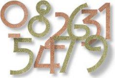Сколько метров волос и ногтей вырастает у человека, или Алгебра тела