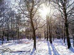 Что хорошего в зиме?