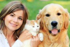 Кошка, собака и другие... Как подружить домашних питомцев?