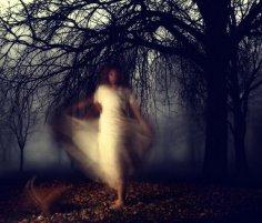 Привидения с научной и логической точки зрения