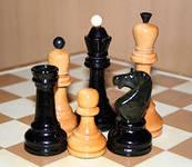 Шахматы - модель жизни?