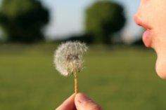 Как исполняются наши желания?