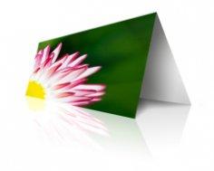 Желаю счастья... Искренни ли наши пожелания в открытке?