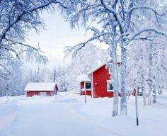 Чем удивляет Финляндия? Ко Дню независимости необыкновенной страны