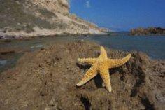 Как хорошо отдохнуть в Греции безо всяческих программ?