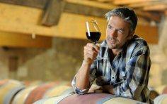 Как без излишних хитростей приготовить домашнее вино? Первая малость от случайного винодела