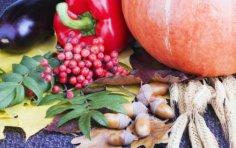 Что приготовить из сладкоплодной красной рябины?
