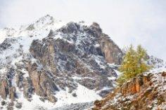 Существует ли снежный человек в Андах?
