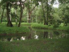 Где можно отдохнуть в Москве? Путяевские пруды