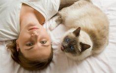 Вы знакомы с кошачьими ритуалами? Утренняя прелюдия