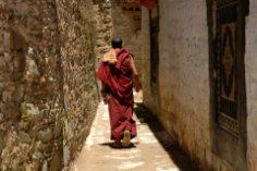 В чем секрет долголетия тибетских монахов?