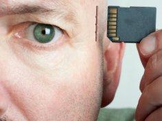 Человеческая память – в чем секрет?