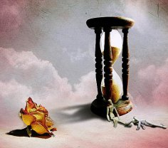 В поисках вечной жизни